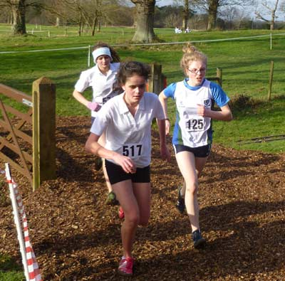 Co Down District Cross-Country Championships